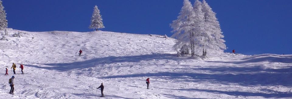 Winter in Bildern